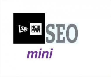 provide a new era SEO mini the most effective Anti Panda service ever