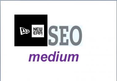 provide a new era SEO medium the most effective Anti Panda service ever