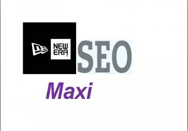 provide a new era SEO maxi the most effective Anti Panda service ever