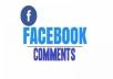 deliver Facebook Custom comments 100